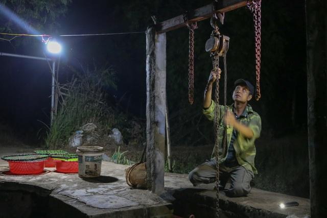 Hải Dương: Chong đèn đi săn lộc trời, kiếm hàng chục triệu mỗi đêm - 4