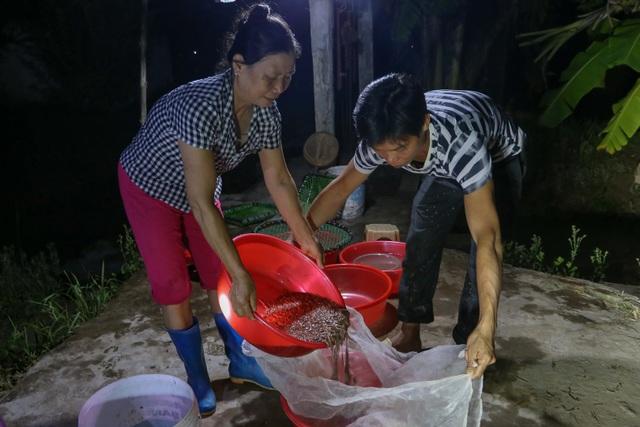 Hải Dương: Chong đèn đi săn lộc trời, kiếm hàng chục triệu mỗi đêm - 10