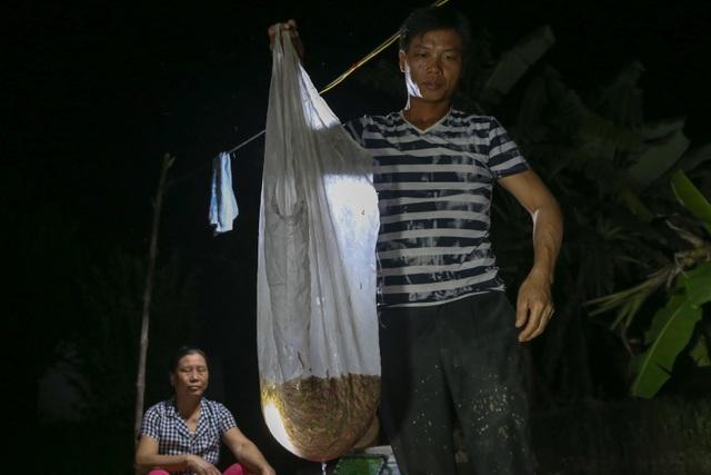 Hải Dương: Chong đèn đi săn lộc trời, kiếm hàng chục triệu mỗi đêm - 5