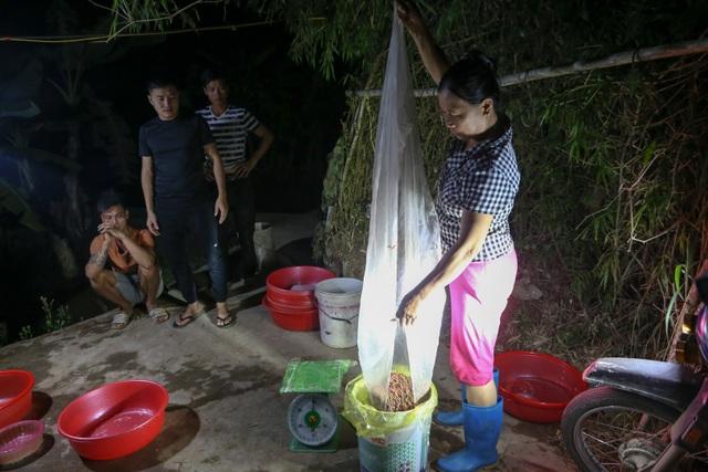 Hải Dương: Chong đèn đi săn lộc trời, kiếm hàng chục triệu mỗi đêm - 7