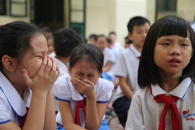 Học sinh quỳ gối, khóc nức nở nhận lỗi đã vô tâm với bố mẹ - 2