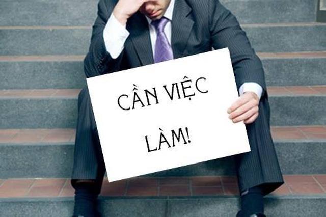 Timviec365.com.vn - Đáp ứng mọi nhu cầu tuyển dụng - 2