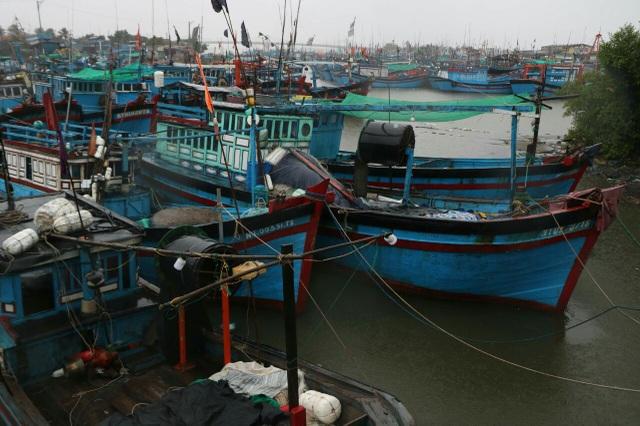 Bão số 5 hình thành trên Biển Đông, hướng về Bình Định - Ninh Thuận - 3
