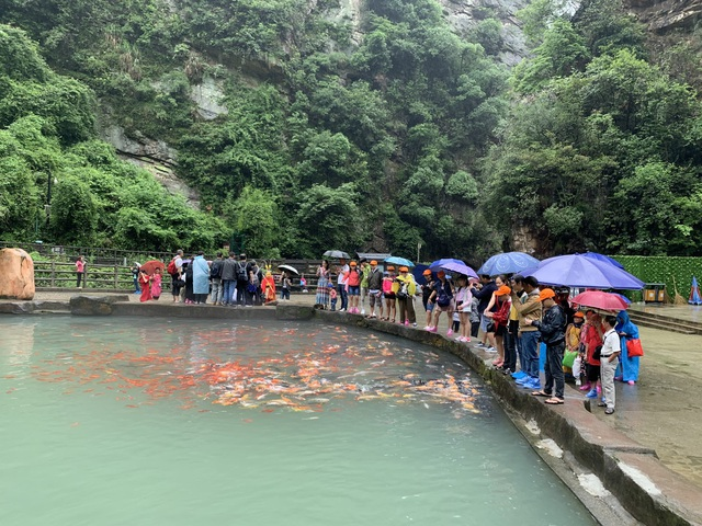 Chỉ từ 8 triệu để ghé Hoàng Sơn – Tứ tuyệt của Trung Quốc cho Tour 6N-5Đ - 2