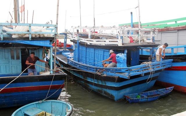 Phú Yên, Ninh Thuận hối hả phòng chống bão số 5 - 1