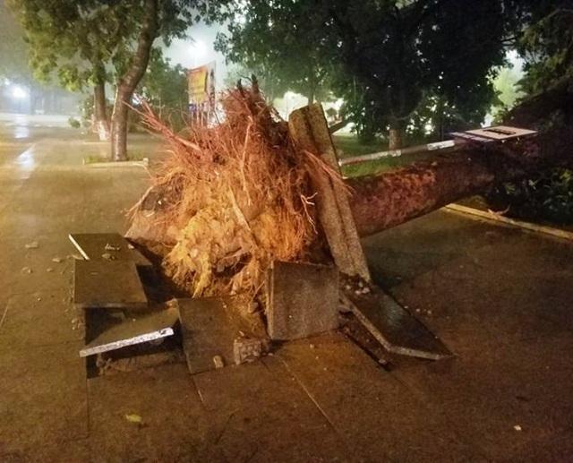 Miền Trung mưa lớn xối xả, mất điện diện rộng nhiều nơi - 9
