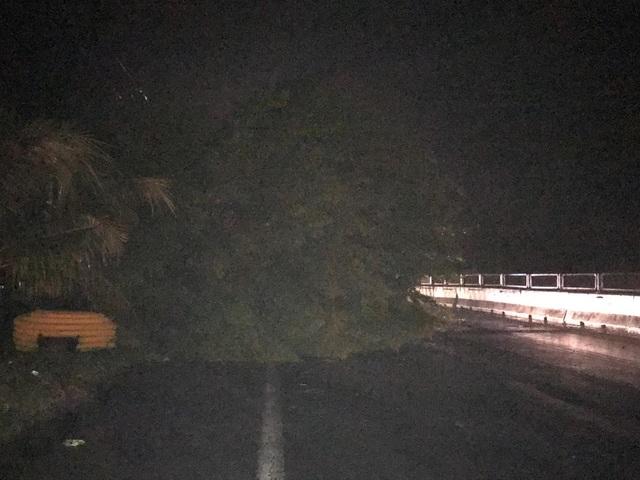 Miền Trung mưa lớn xối xả, mất điện diện rộng nhiều nơi - 5