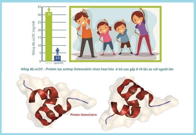 """Bộ 3 vi chất cho tăng chiều cao: Thiếu Vitamin K2 và D3, canxi khó """"cán đích"""" - 2"""