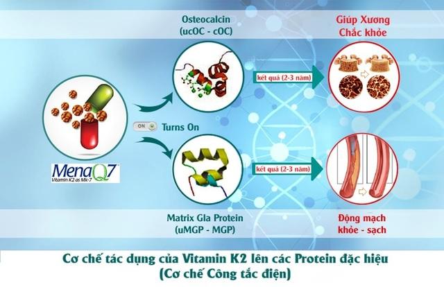 """Bộ 3 vi chất cho tăng chiều cao: Thiếu Vitamin K2 và D3, canxi khó """"cán đích"""" - 4"""