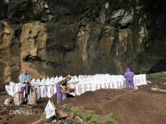 Nghề lạ ở Lạng Sơn: Gom phân vua trong hang tối kiếm ra tiền - 2