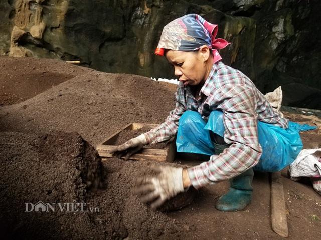 Nghề lạ ở Lạng Sơn: Gom phân vua trong hang tối kiếm ra tiền - 4