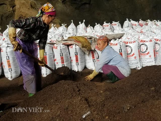 Nghề lạ ở Lạng Sơn: Gom phân vua trong hang tối kiếm ra tiền - 5