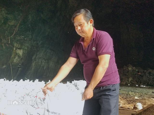 Nghề lạ ở Lạng Sơn: Gom phân vua trong hang tối kiếm ra tiền - 6