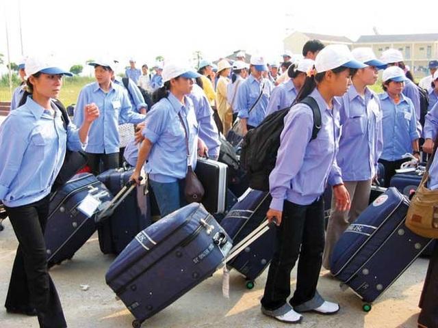 ILO: Cảnh báo nhiều nguy cơ đối với lao động di cư bất hợp pháp - 1