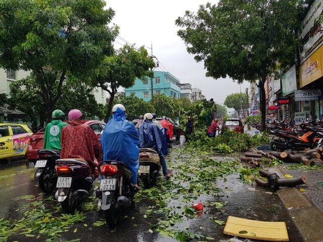 Cây xanh đổ đầy đường phố Đà Nẵng - 4