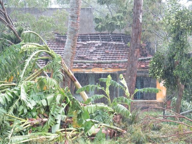 Người dân đội mưa vá mái nhà sau bão - 1