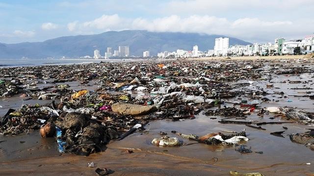 Biển Quy Nhơn ngập rác sau bão số 5, thanh niên xắn tay thu dọn  - 1