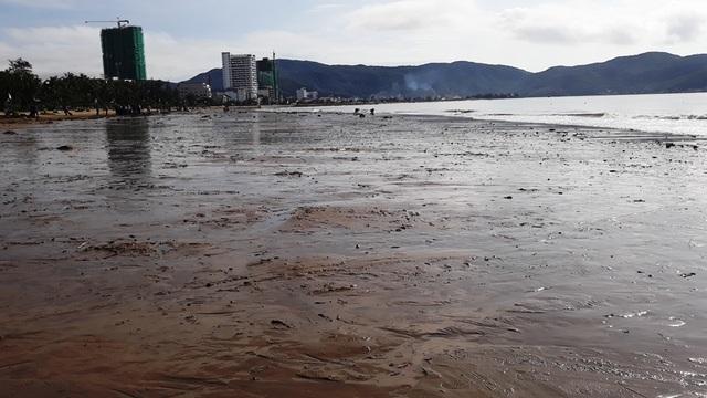 Biển Quy Nhơn ngập rác sau bão số 5, thanh niên xắn tay thu dọn  - 7
