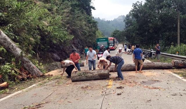 Lực lượng CSGT Quảng Nam trắng đêm dọn cây xanh bị ngã đổ sau bão