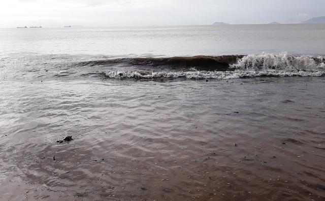 Biển Quy Nhơn ngập rác sau bão số 5, thanh niên xắn tay thu dọn  - 8
