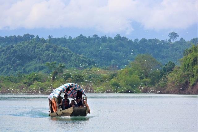 Trung tâm đa dạng sinh học bậc nhất Việt Nam đón nhận danh hiệu Vườn di sản ASEAN - 1
