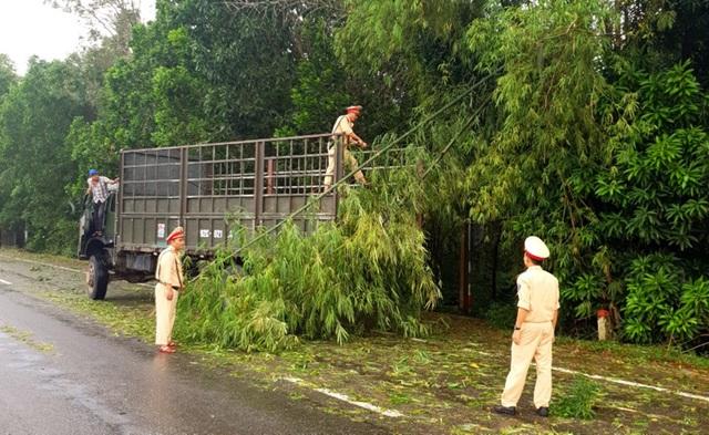 Lực lượng CSGT trắng đêm dọn cây xanh bị ngã đổ sau bão