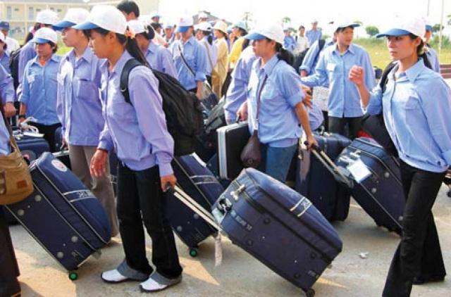 Việt Nam chưa đưa lao động chính thức vào làm việc ở Anh Quốc - 1