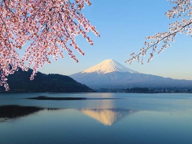 Tokyo là thành phố đẹp nhất thế giới và đây là lí do tại sao - 12