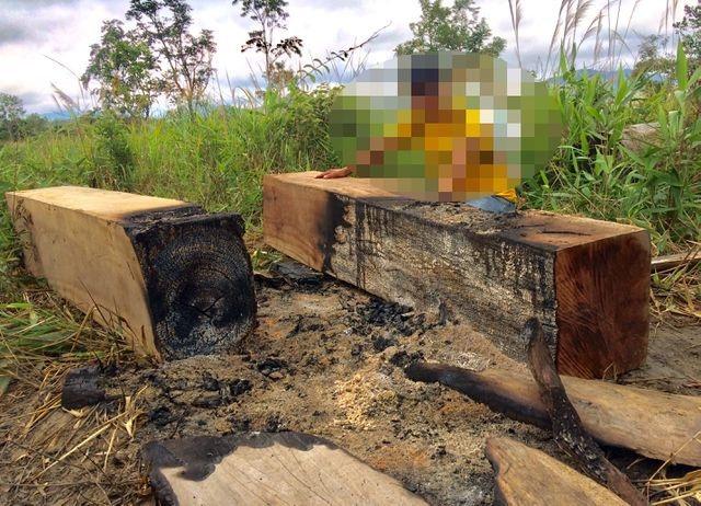 Bắt giám đốc doanh nghiệp trộn gỗ lậu với gỗ hợp pháp để tiêu thụ - 1