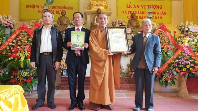 Cây thị 900 năm tuổi bên bến Bạch Đằng Giang được công nhận Cây Di sản - 1