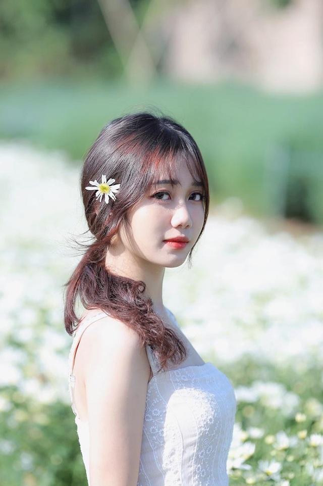 """""""Thiên thần ảnh thẻ"""" Lào Cai tinh khôi bên hoa cúc họa mi đầu mùa - 4"""