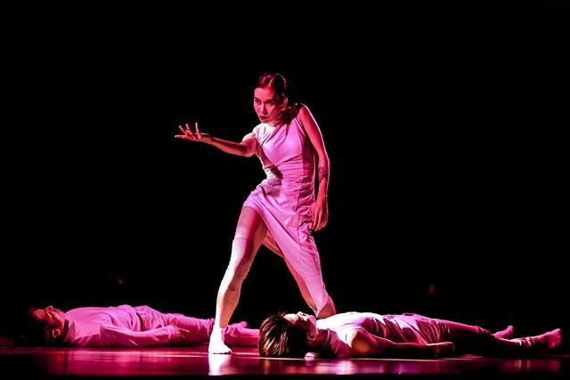 Múa Việt Nam toả sáng trong Lễ hội múa đương đại quốc tế - 1