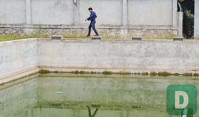 Thừa Thiên Huế: Sẽ chấn chỉnh tình trạng học sinh tử vong ở các bể bơi - 1