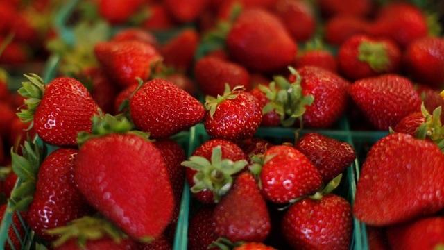 Những loại trái cây tốt nhất cho bệnh nhân ung thư - 10