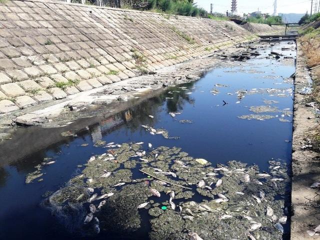 Máy ép bùn Công Ty TNHH Rotec Việt Nam: Quá tải trong xử lý chất thải là việc có thể kiểm soát - 1