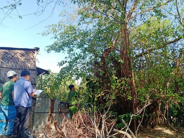 Diễn tiến lạ trong vụ chặt cây trên đất đã mua, nguy cơ bị ngồi tù tại Kiên Giang - 2