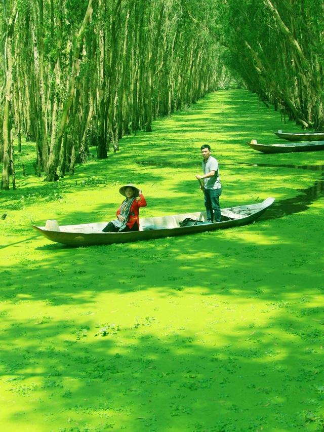 Màu xanh mê hoặc của rừng tràm Trà Sư mùa nước nổi - 6