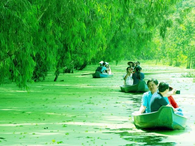 Màu xanh mê hoặc của rừng tràm Trà Sư mùa nước nổi - 1