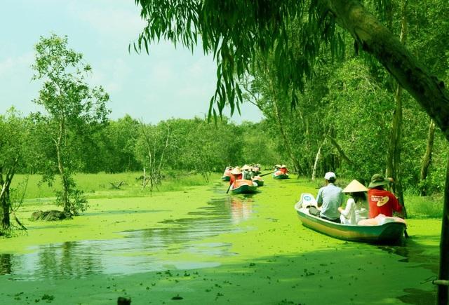 Màu xanh mê hoặc của rừng tràm Trà Sư mùa nước nổi - 3