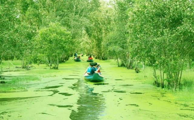 Màu xanh mê hoặc của rừng tràm Trà Sư mùa nước nổi - 4