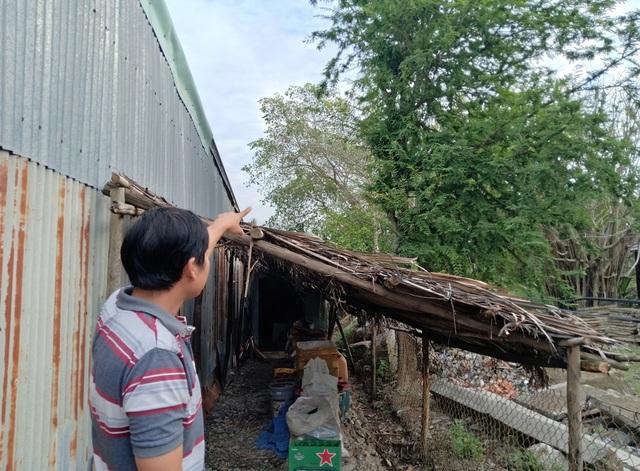 Diễn tiến lạ trong vụ chặt cây trên đất đã mua, nguy cơ bị ngồi tù tại Kiên Giang - 4