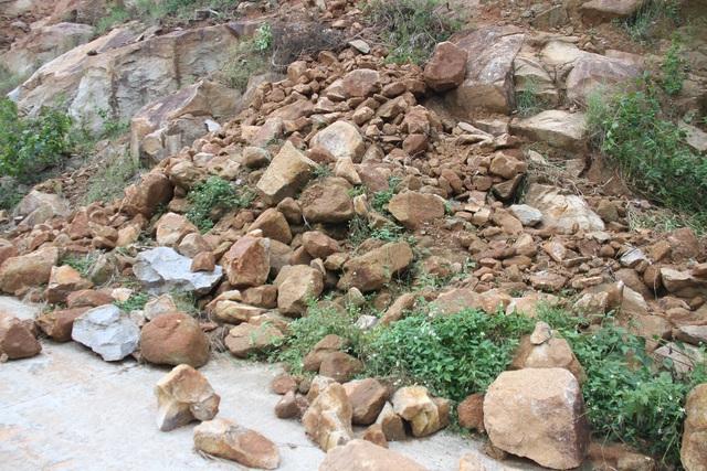 Đà Nẵng: Bán đảo Sơn Trà sạt lở nghiêm trọng - 1