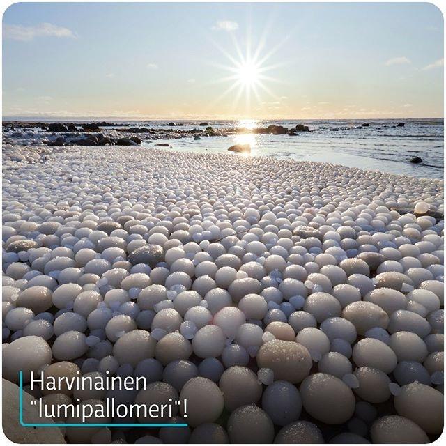 """Kỳ lạ hiện tượng băng """"tròn như trứng"""" tràn ngập bờ biển Phần Lan - Ảnh minh hoạ 2"""