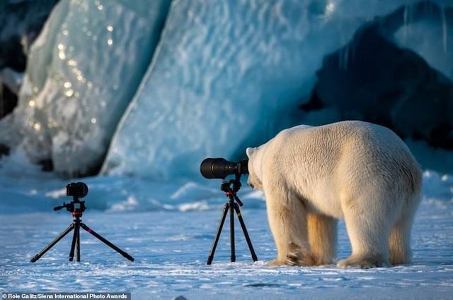Mê hoặc những bức ảnh đoạt giải thưởng nhiếp ảnh quốc tế Siena 2019 - 8