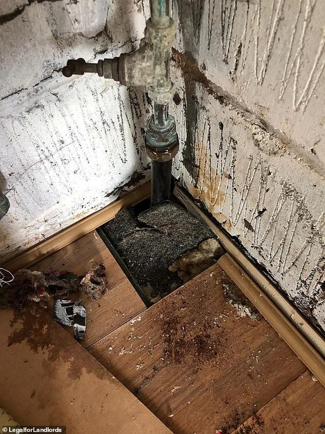 Cơn ác mộng của chủ trọ với căn nhà đầy rác thải và người thuê trọ trốn nợ - 1