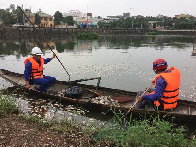 Hàng tấn cá chết bốc mùi hôi thối ở hồ nước giữa lòng thành phố - 2