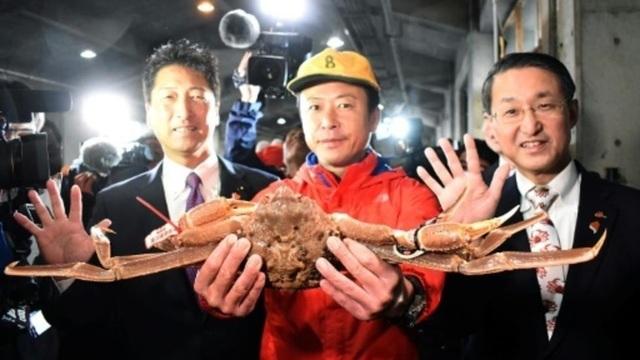 Hơn 1 tỷ đồng cho một con cua tuyết Nhật Bản - 1