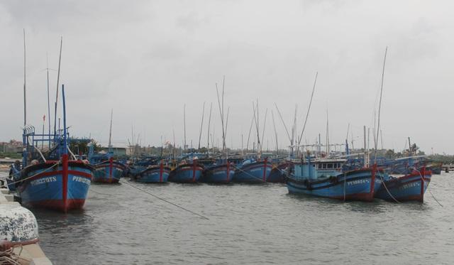 Cấm biển, cưỡng chế các hộ dân khu vực nguy hiểm để ứng phó với bão số 6 - 1