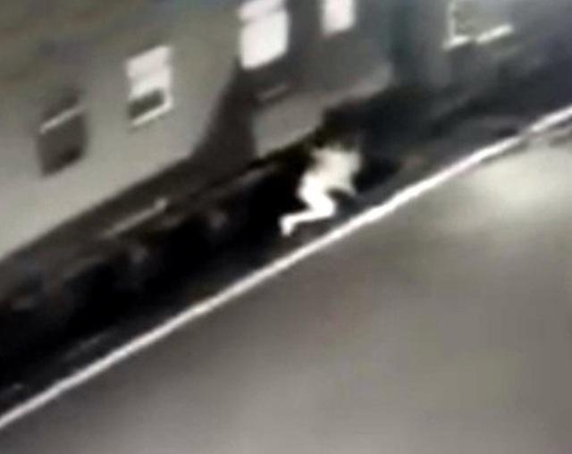 Clip: Bị chẹt đứt chân vì cố nhảy lên tàu đang di chuyển - 2