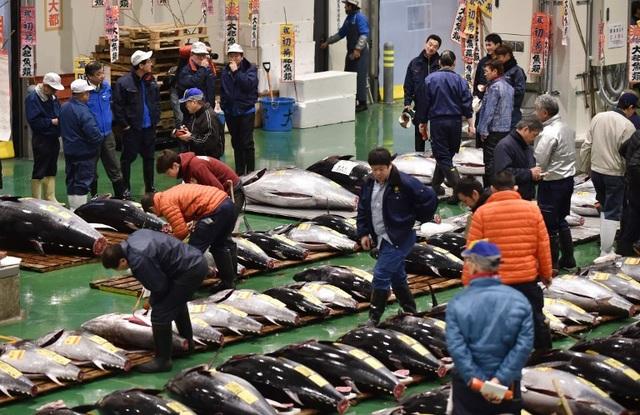 """""""Choáng"""" với những loại hải sản đắt nhất thế giới  - 4"""